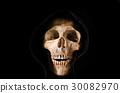 Still life the human skull on black background 30082970