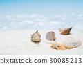 summer, seashore, sandy 30085213
