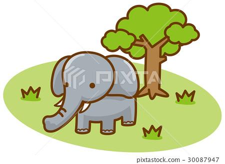 大象 矢量 白底 30087947