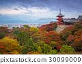 temple, japan, dera 30099009
