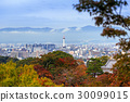 Kyoto city and tower with autumn trees in Japan 30099015