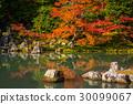 arashiyama,autumn,kyoto 30099067