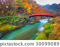 Shinkyo Bridge during autumn in Nikko, Japan 30099089