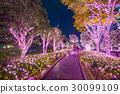 Winter illumination in Tokyo at Shinjuku, Japan 30099109