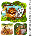Wild animals in forest 30100693