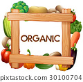 Frame template with fresh vegetables 30100704