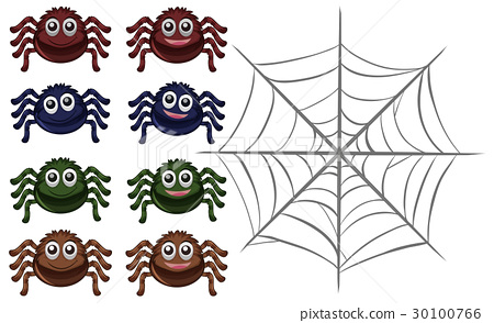Spiders and web on white background 30100766