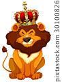 Wild lion wearing crown 30100826