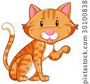 Cute cat sitting alone 30100838