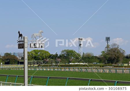 在東京賽馬場的巴巴指導騎手和草皮 30108975