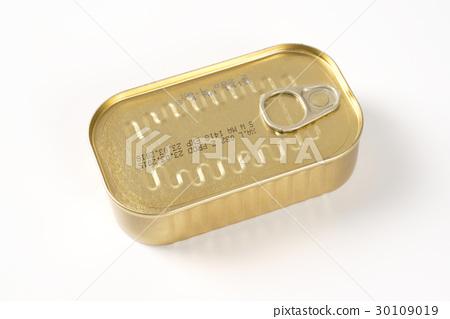 closed tin of sardines 30109019