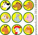 Farm animal cartoon collection 30110690