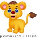 사자, 벡터, 아기 30111346