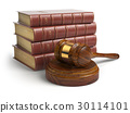 Gavel and lawyer books. Justice, law 30114101