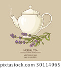 lavender tea in teapot 30114965