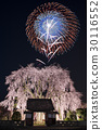 라이트업, 야간 관람, 수양벚나무 30116552