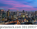 Osaka downtown city skyline in Japan 30116937