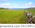 Stone wall in Scottish countryside 30119651
