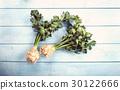 green celery root 30122666