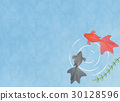 Two goldfish illustrations in the water Illustration material Copy space Summer / Season material / Japanese material 30128596