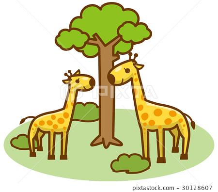 长颈鹿 矢量 全身 30128607