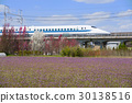 子彈火車 東海道新幹線 700系列 30138516