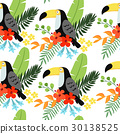 toucan, pattern, tropical 30138525