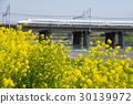 신칸센, 도카이도 신칸센, N700 시스템 30139972