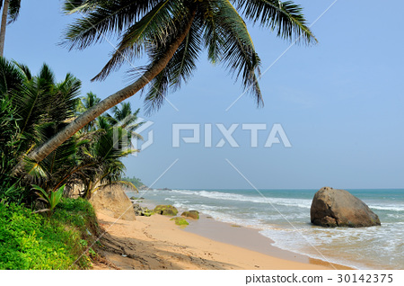 Tropical beach 30142375
