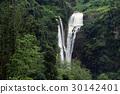 Beautiful waterfall in Sri Lanka 30142401