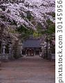 世界遺產 世界文化遺產 淺間神社 30145956