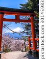 鸟居 鸟居门 富士山 30145983