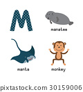 Cute zoo alphabet in vector.M letter. Funny 30159006