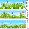 Nature banners with blue sky and flowers 30159279