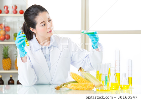 female scientist looking for gmo corn dna 30160547