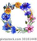Wildflower carnation flower frame in a watercolor 30161448