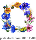 Wildflower carnation flower frame in a watercolor 30161508