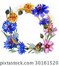 Wildflower carnation flower frame in a watercolor 30161520