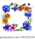 Wildflower carnation flower frame in a watercolor 30161530