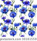 Wildflower carnation flower pattern in a 30161559