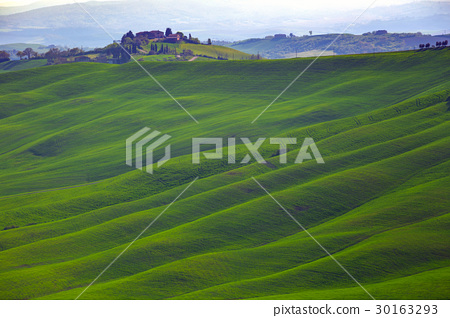 Typical Tuscan landscape 30163293