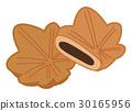 단풍 만두의 일러스트 30165956