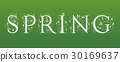 spring, lettering, vector 30169637