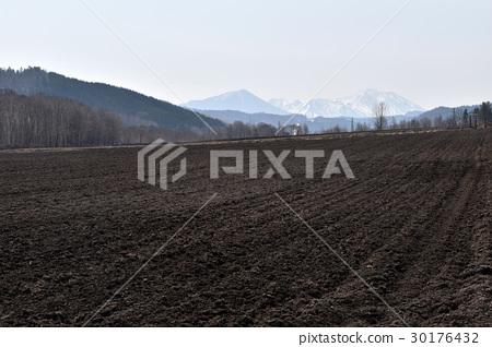 산있는 홋카이도의 풍경 30176432