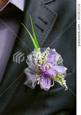 boutonniere flower in the pocket of the groom 30181516