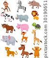 동물, 밑그림, 모음집 30190651