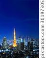 東京夜景 30197305