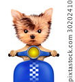 Adorable puppy sitting on a motorbike 30202410