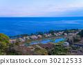ดอกซากุระบาน,ซากุระบาน,ทัศนียภาพ 30212533