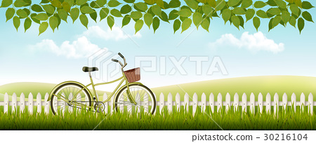 Nature meadow landscape with a bicycle. Vector. 30216104